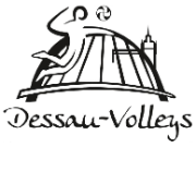Dessau Volleys